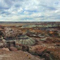 цвета пустыни :: svabboy photo