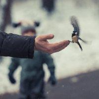 Папины руки :: Александр Колесников