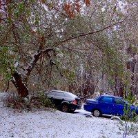 Первый снег 2 :: Юрий Владимирович 34