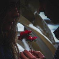 Аленький цветочек :: Anastasia Silver