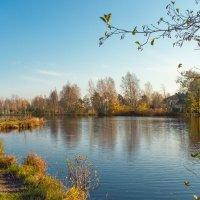 Октябрь на Угольном острове :: Виталий