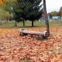 Гуляет осень в парке :: Liliya Kharlamova