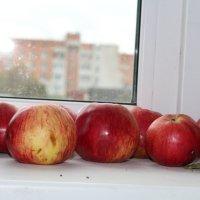 яблочки :: Ирэн