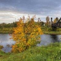 Задумчивая осень :: Константин