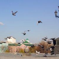 Москва :: Ольга Лапшина