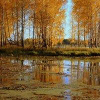 Осенний островок :: d2vnlp *