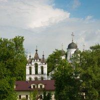 Спасо-Преображенская церковь в Больших Вяземах :: Alexander Petrukhin