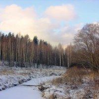 Картины Зимы :: Андрей .