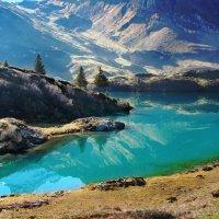 природные фантазии :: Elena Wymann