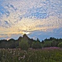 Какое было небо! :: Елена