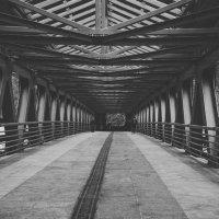 Мост :: Наталья Мальцева