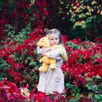 Красная осень :: Ирина Ширма