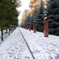 Парк :: Альбина Васильева