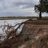 На правом берегу Волги далеко за Волгоградом... :: Аnatoly Polyakov