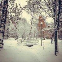 Мост  в снегу :: Вячеслав Баширов
