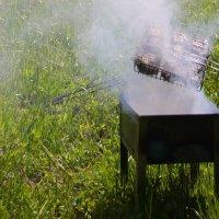 И пикника нам дым заманчив и приятен.... :: Tatiana Markova
