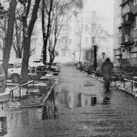-мокро...холодно... :: СветланаS ...