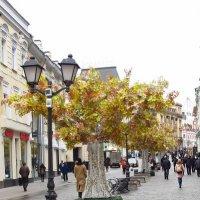 Осень в городе :: Ирина Хан