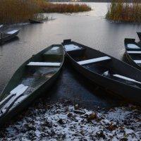 первый снег :: Владимир Бурдин