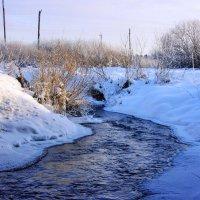 Зима у реки :: Андрей .