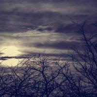мрачное небо :: Танюсик *****