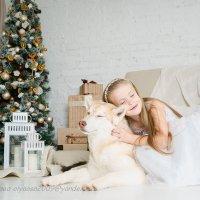 Принцесса Марго в Новогодней сказке :: Ольга Осипова