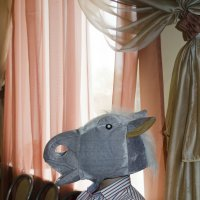 на выпускном был конь, а кто им был никто не помнит))) :: Ольга Русакова