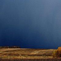 На полях солнце, а  там - вдалеке, дождь стеной.... :: Валерия  Полещикова