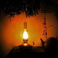 В свете лампы :: Сергей Чиняев