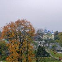 Мир со стены Мирского замка :: Елена Павлова (Смолова)