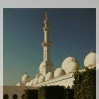 Мечеть шейха Зайеда в Абу-Даби. :: Валентина Потулова