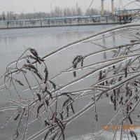 Ледяной плен :: Галина