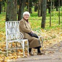 Осень года, осень жизни. :: Александр Петров