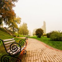 Осень.Туман................ :: Александр Селезнев