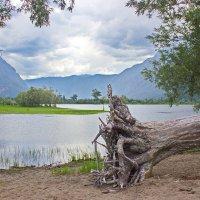 У озера :: val-isaew2010 Валерий Исаев