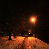Свет фонарей :: Дмитрий