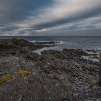 Скалы у моря :: Владимир Колесников