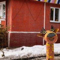 В мире жывотных :: Павел Самарович
