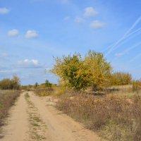 Мои дороги. :: Виктор ЖИГУЛИН.