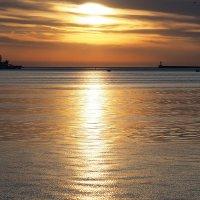 золото Севастопольской бухты :: Дмитрий Дмитриев