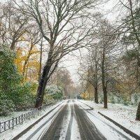 Снег в октябре 16 :: Виталий
