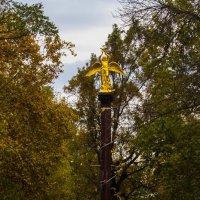 Осень,Краснодар :: Cain Amberskii