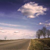 Глазастое облако... :: Елена Kазак