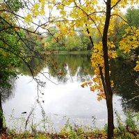 Вид на парковое озеро в конце октября :: Маргарита Батырева