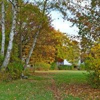 Осень ты прекрасна... :: Galina Dzubina