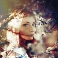 Kissed by the Sun :: Ruslan Bolgov