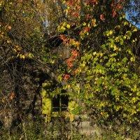 Старый дом :: Евгений Карский