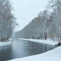 Зима пришла в начале ноября :: Михаил
