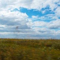 Небесам нет дела до нашей суеты. :: Игорь Юсов