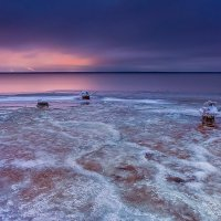 Первый лёд :: Алексей Дмитриев